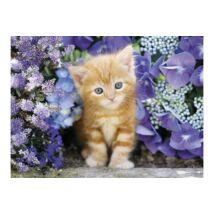 Puzzle Vörös cica virágok közt