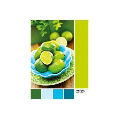 Pantone 382 - Lime puncs (1000 db)