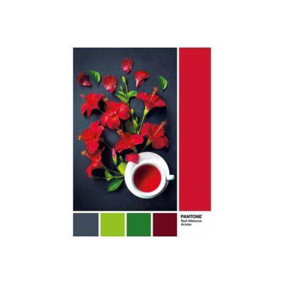 Pantone 186 - Hibiszkusz tea (1000 db)